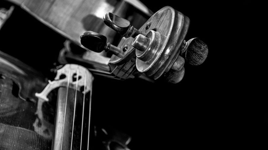 【音楽史】ベースの歴史【ウッドベース・エレキベース・シンセ】