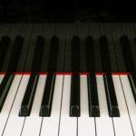 【音楽理論】対位法とは?初心者向けに解説しました【作曲のコツ】
